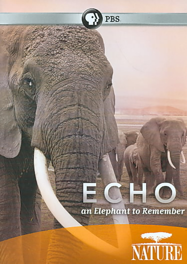 NATURE:ECHO ELEPHANT TO REMEMBER BY NATURE (DVD)
